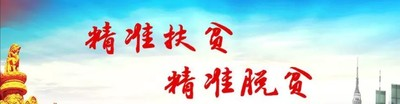 习总书记谈精准扶贫(中国共产党新闻网)